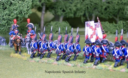 28mm Napoleonic Spanish Infantry back view